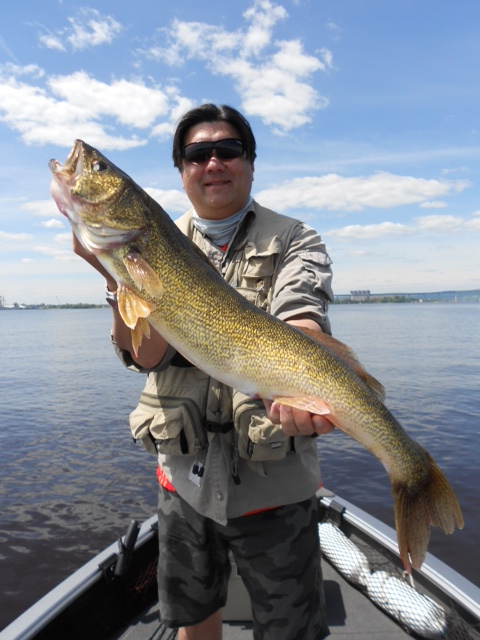 Wisconsin fishing report for Plenty of fish st louis